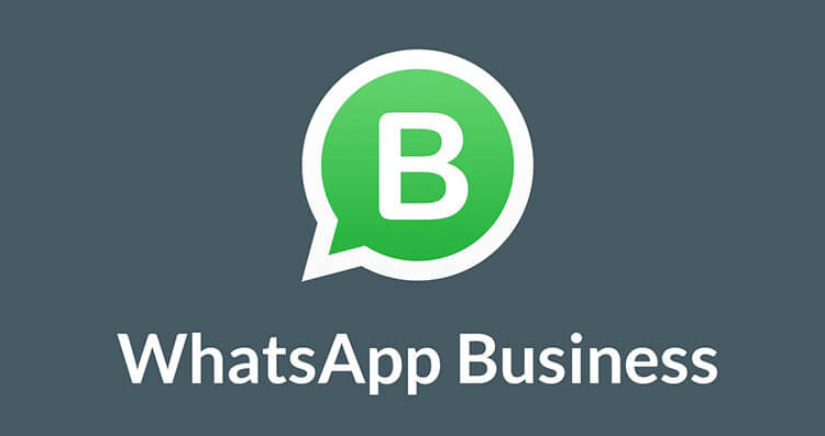 formation-whatsapp-business